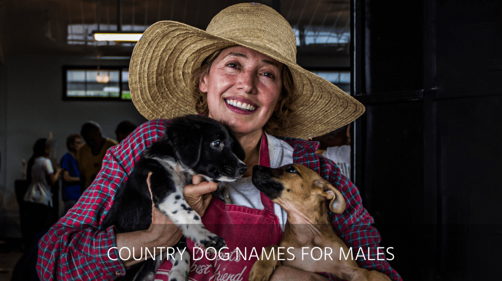 Ultimate List Of The Top 500 Country Dog Names Southern Western And Redneck Puppy Name Ideas